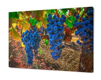 California Fall Print, Napa Sonoma Photo, Vineyard Fine Art, Wine Country Canvas, Wine Grapes Photo, Wall Hanging, Winery, Large Wall Decor