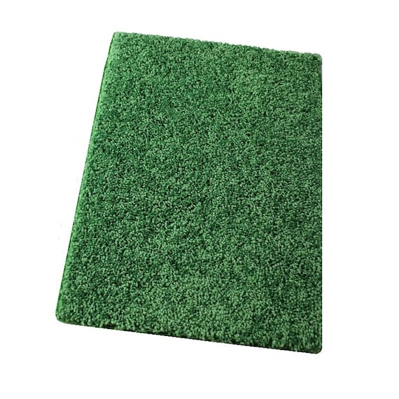 Leap Frog Green 30 Oz. Plush Indoor Area Rug By KoeckritzRugs