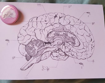 Anatomical brain card and badge (A5)