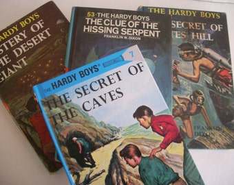 Hardy Boys by Franklin W. Dixon, Four  Book Set of Retro Reads for Young Boys