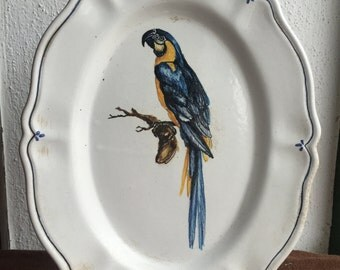 Parrot Ceramic Wall Plate * ceramic plate with Parrot