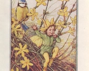 Flower Fairies: The WINTER JASMINE FAIRY Vintage Print c1930 by Cicely Mary Barker