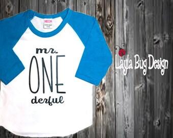 Mr. ONEderful Raglan | Raglan tee for boys | Mr Onederful  shirt | Birthday party shirt | first birthday tee | boys first birthday