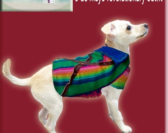 Dog Mexican outfit