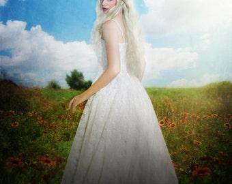 Summer Meadow ll ~ Raw digital background