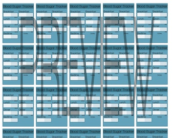 Diabetic Blood Sugar Tracker Chart Printable Stickers for Erin Condren Full Box Download PDF