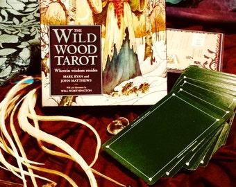 Wildwood Tarot Reading