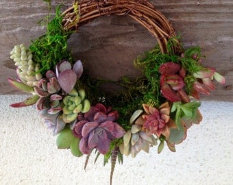 Succulent Wreath on Grapevine