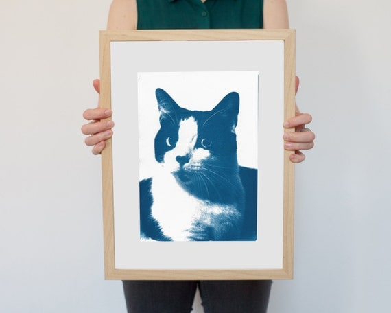Cat Celebrity Portrait, Cyanotype Print on Watercolor Paper, A4 size (Limited Edition)