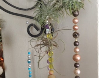 Hanging Air Plant Ultra Group of Three