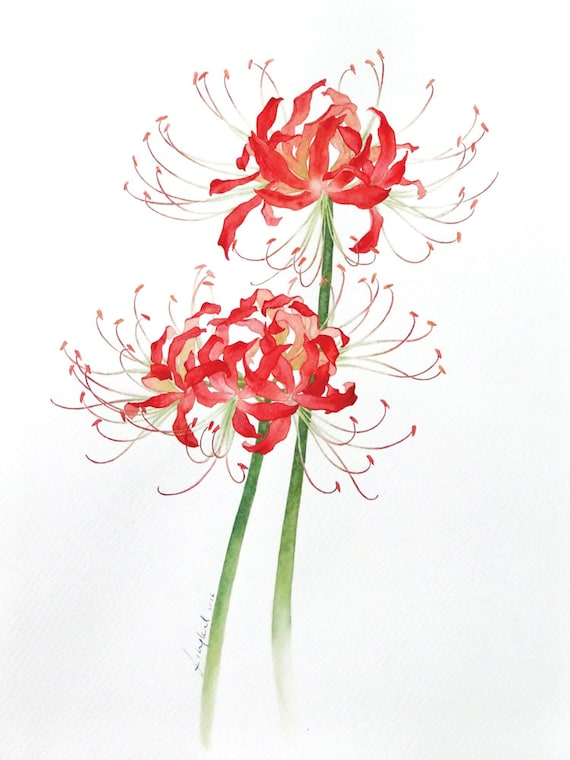 Items similar to Original floral painting * Red Spider ...