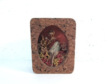 Vintage bird in cork frame, cork frame with dried flowers and faux bird, diorama bird in cork