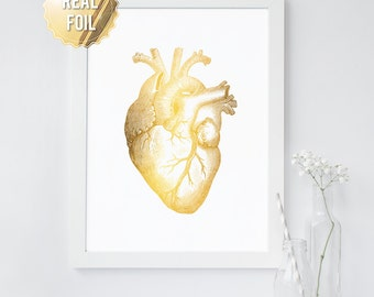 Human Heart Anatomical Art Print - REAL GOLD FOIL - Anatomy Wall Art - Valentine's Day Gift Idea - Medical Art - 65 Background Colors
