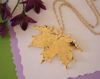 Gold Sugar Maple Leaf Necklace, Real Gold Leaf, Real Maple Leaf Necklace, Canadian Leaf, Gold Filled, LC74