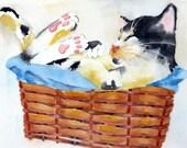 Beautiful Cat Art / Watercolor PRINT / Animal kitty cat lover artwork / Wall art black white color field / Tuxedo cat lover / Cat painting