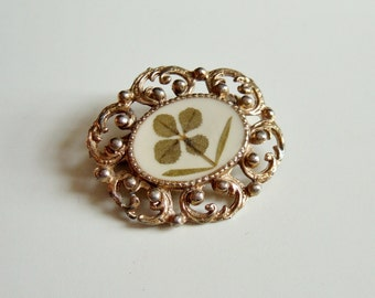 Vintage Four Leaf Clover  Brooch - Lucky Real Four Leafed Clover in 1960s Ornate Brooch