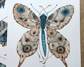 Butterfly ELECTRA, original watercolor painting