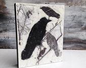 Blackbirds Original Encaustic Painting Black & White Modern Urban Bird Crow