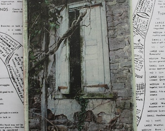 Shuttered Window, Abandoned, House, Haunted, Overgrown, Photography, Valley Forge Park, Pennsylvania, 4 x 6, Mixed Media, Affordable Art