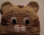 Daniel the Tiger - inspired Crochet Hat   - Photo shoot props - Preschoolers cap - Halloween