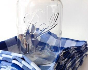 Blue Gingham Cloth Picnic Napkins, Cloth Dinner Napkins