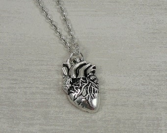 Human Heart Necklace, Silver Realistic Human Heart Charm on a Silver Cable Chain
