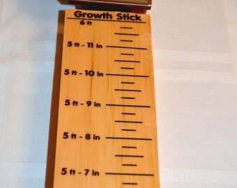Childrens GIFT  Pirate Ship Wood Growth Measure Stick Gift made in USA  ships in 24 hours