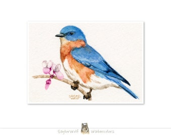 Bluebird 5x7 Art Print of Original Watercolor Bird Painting