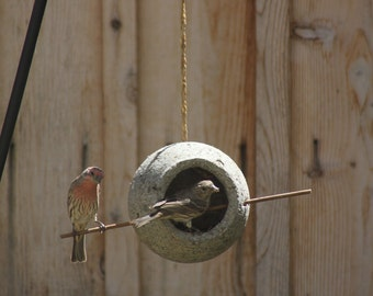 Orb Bird Feeder
