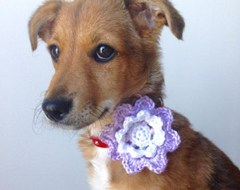 Dog Flower Collar Corsage