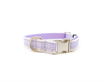 Beautiful Dog Collar, White Lace and your choice of ribbon color