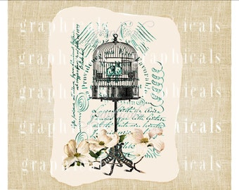 Birdcage instant clip art digital download Pink dogwood French Teal lovebirds for iron on transfer to fabric burlap decoupage pillow No. D13
