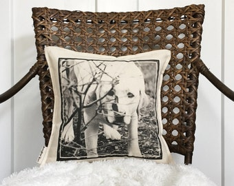 "12"" Custom Photo Pillow - Your Photo On A Pillow - Customizable Dog Photo Decor - Picture Pillow - Photo Pillow With Quote - Insert Included"