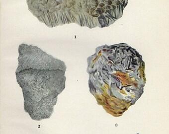 Vintage 1911 Minerals Print Antique Gems Precious Stones print gemstones print, bookplate art print, minerals wall print wall art 2