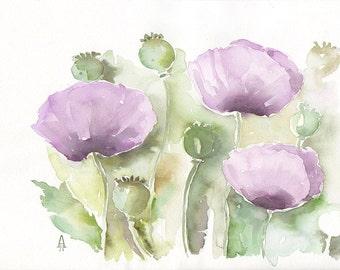 Papavers,  Original watercolor painting, botanical art, flower art, floral painting, poppies