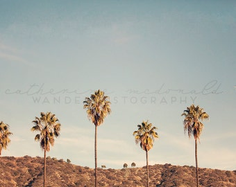 N.E.L.A. |  Photographic Print -  Eagle Rock, Palm Tree, green, Los Angeles, California, Bohemian, blue, boho, decorating, Vintage, Decor,