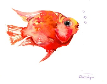 parrot cichlid, Original watercolor painting, 8 X 10 in, red  fish art. Fish painting, Bright orange pink wall art animal art