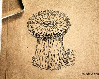 Anemone Rubber Stamp - 2 x 3 inches