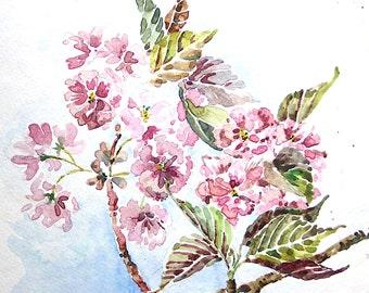 Cherry Blossom Print 6 x 6