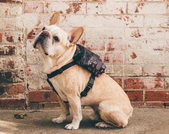 Dog Harness Backpack / Dog Backpack & Harness - Ripple Print