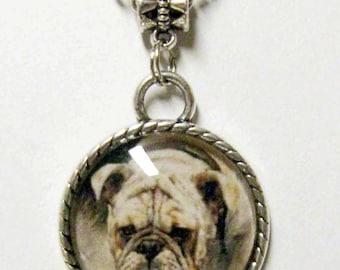 Tan bulldog pendant with chain - DAP05-018