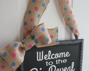 Big Reveal Sign Hanging Painted or Chalkboard Pink or Blue Decoration - Welcome to the Big Reveal Pink and Blue Polka Dot