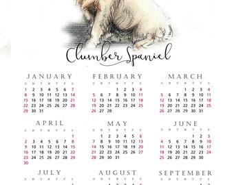 Clumber Spaniel 2017 yearly calendar