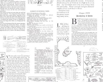 Newsprint Fabric, Plant Words Fabric, Desert Bloom, Riley Blake C5355 Text White, Amanda Herring, Botanical Words Quilt Fabric, Cotton