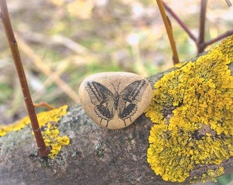 Butterfly Art - Butterfly Gift - Butterfly Decor - Gift for Her. Butterfly Home Decor Beach Stone Decor. Butterfly Bedding Decorations