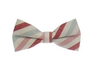 Colorful Striped Bowtie.Mens Bowtie.Wedding Bowtie.Gift Ideas.Bowtie Set.Bowtie for Prom