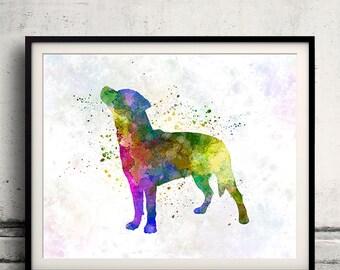 Smalandsstovare 01 in watercolor - Fine Art Print Glicee Poster Decor Home Watercolor Gift Illustration dog - SKU 1642