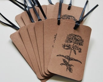 Flower Gift Tags: 12 Kraft Gift Tags - Hang Tags - Victorian - Soapwort - Brown Gift Tags - Flower Gift Tags - Kraft Tags - Flower Tags