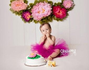 Fuchsia Tutu, Raspberry Tutu, Dark pink tutu, Preemie, Newborn to 14/16 teen, Bright, Magenta Tutu, Baby Tutu, Birthday,photo prop
