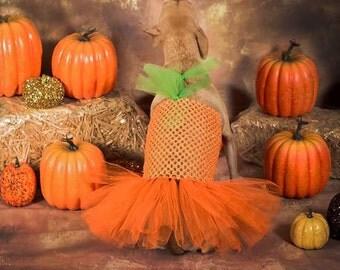 The Punkin - Pumpkin Dog Costume, Halloween dog costume, pumpkin dog dress,  pumpkin dog tutu, costume for dogs, dog pumpkin, dog tutu